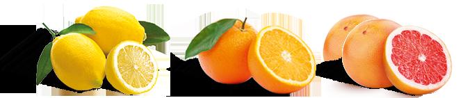 Lemon Mama Lemonade Ingredients