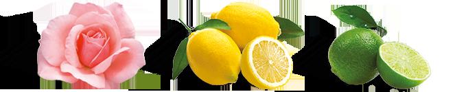 Oriental Mama Lemonade Ingredients
